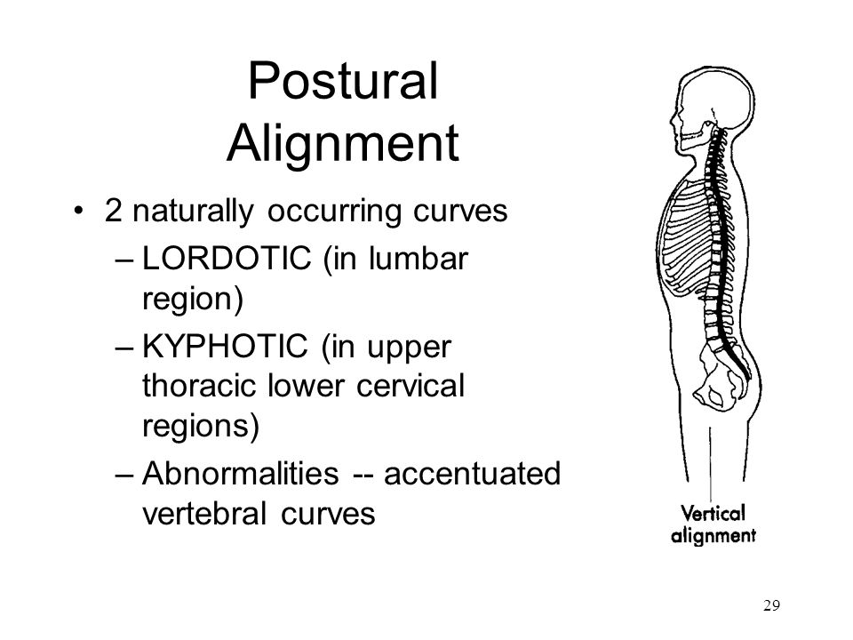 29 Postural Alignment 2 naturally occurring curves –LORDOTIC (in lumbar region) –KYPHOTIC (in upper thoracic lower cervical regions) –Abnormalities --