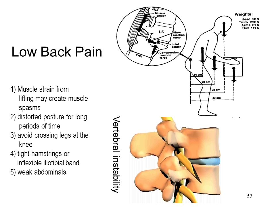 53 Low Back Pain 1) Muscle strain from lifting may create muscle spasms 2) distorted posture for long periods of time 3) avoid crossing legs at the kn