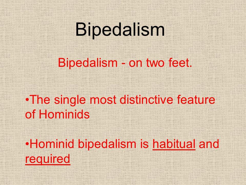 Bipedalism - on two feet.