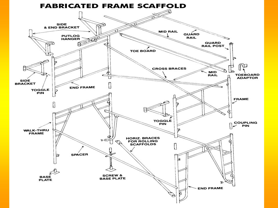  Supported scaffolds must have these features: How Do We Know a Scaffold Is Safe?