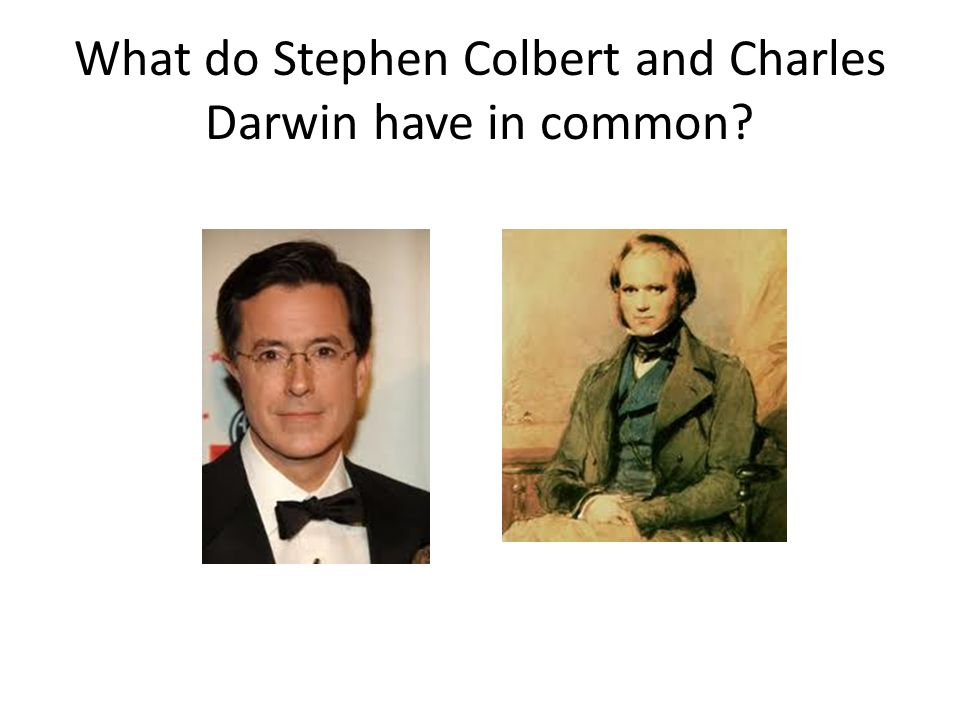What do Stephen Colbert and Charles Darwin have in common