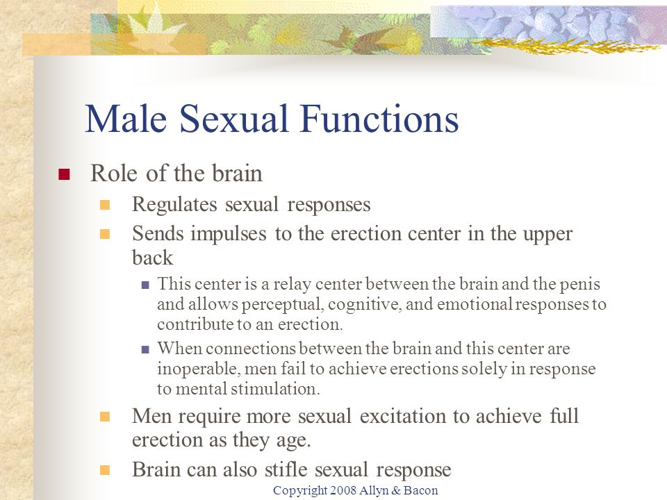 Copyright 2008 Allyn & Bacon Male Sexual Functions Role of the brain Regulates sexual responses Sends impulses to the erection center in the upper back This center is a relay center between the brain and the penis and allows perceptual, cognitive, and emotional responses to contribute to an erection.