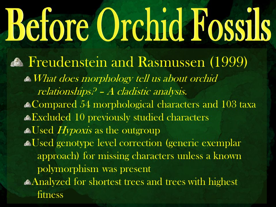 Freudenstein and Rasmussen (1999) What does morphology tell us about orchid relationships? – A cladistic analysis. Compared 54 morphological character