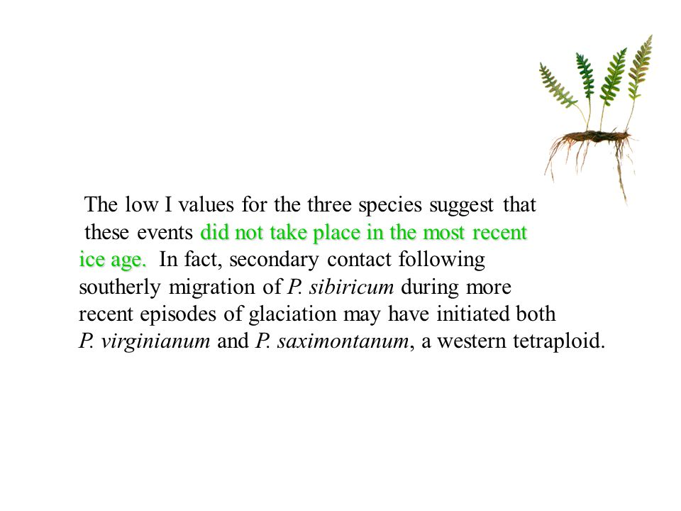 The low I values for the three species suggest that did not take place in the most recent these events did not take place in the most recent ice age.