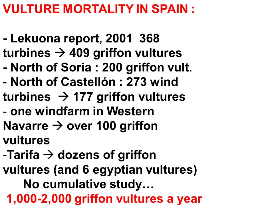 VULTURE MORTALITY IN SPAIN : - Lekuona report, 2001 368 turbines  409 griffon vultures - North of Soria : 200 griffon vult.