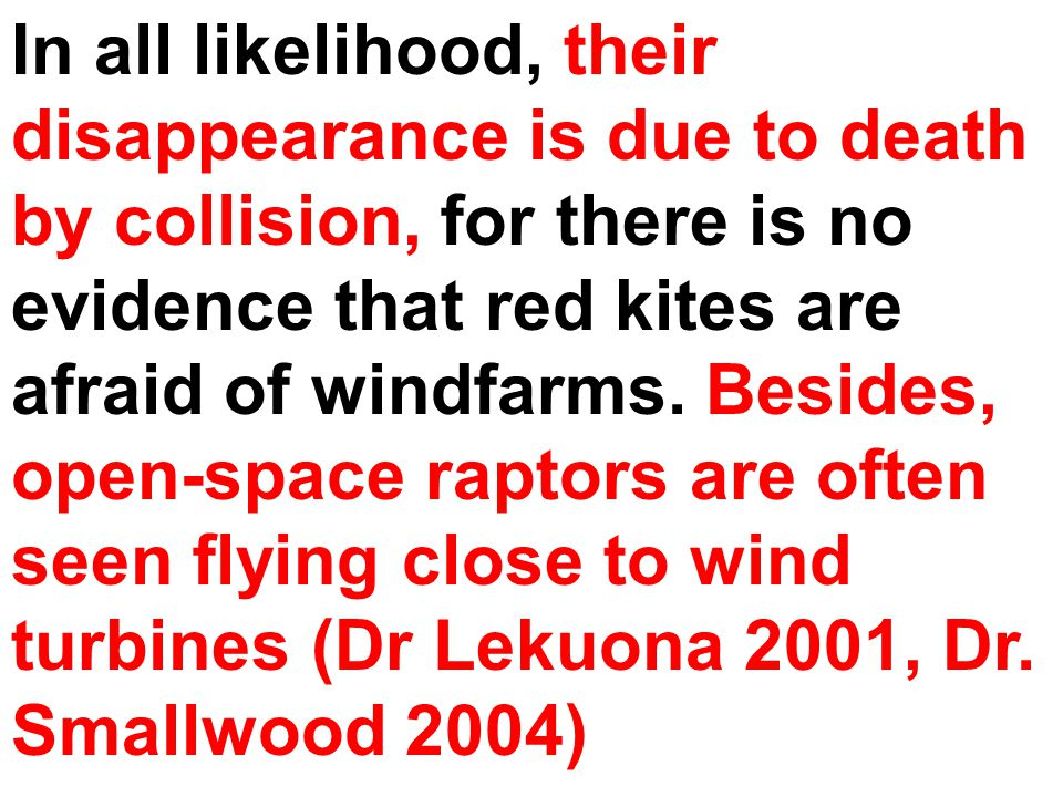 In all likelihood, their disappearance is due to death by collision, for there is no evidence that red kites are afraid of windfarms. Besides, open-sp