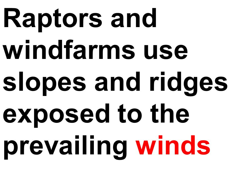 Raptors and windfarms use slopes and ridges exposed to the prevailing winds
