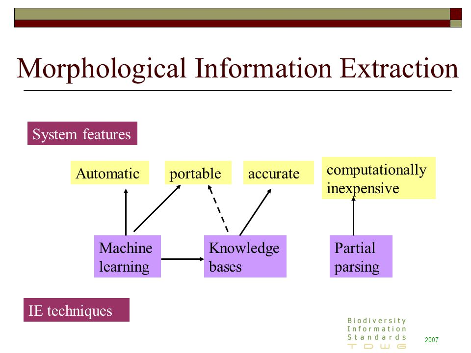 2007 Morphological Information Extraction System features IE techniques Automaticportableaccurate computationally inexpensive Machine learning Partial parsing Knowledge bases
