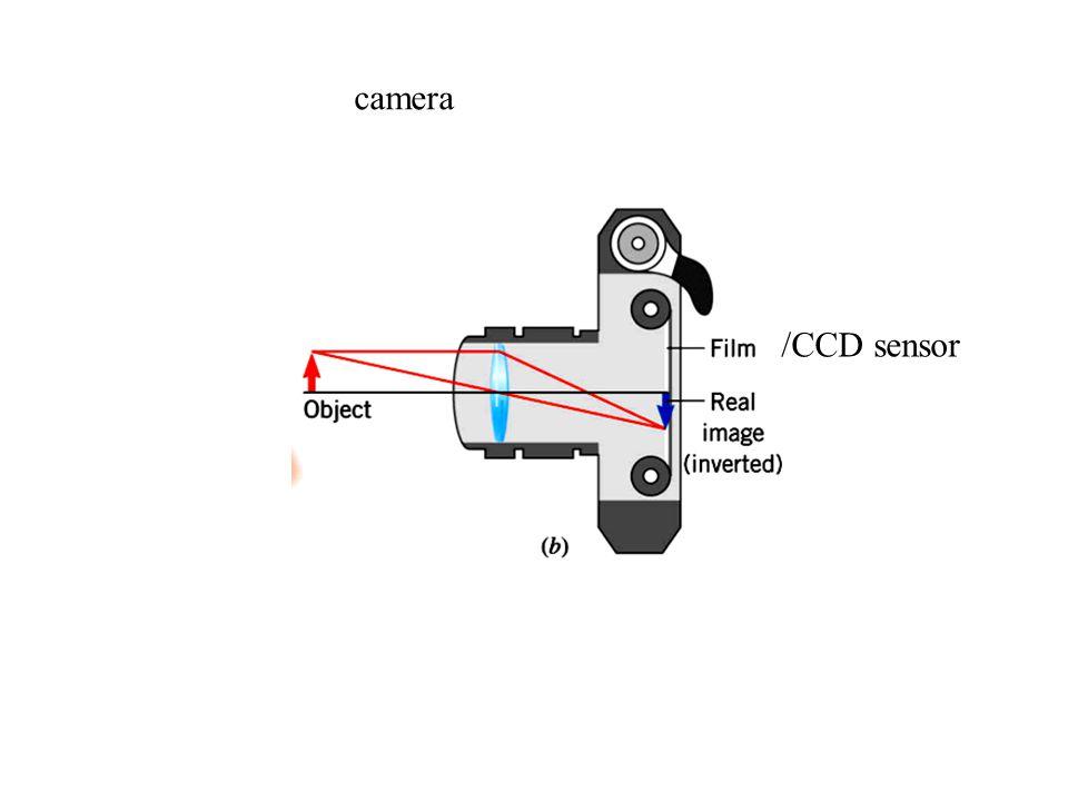 camera /CCD sensor