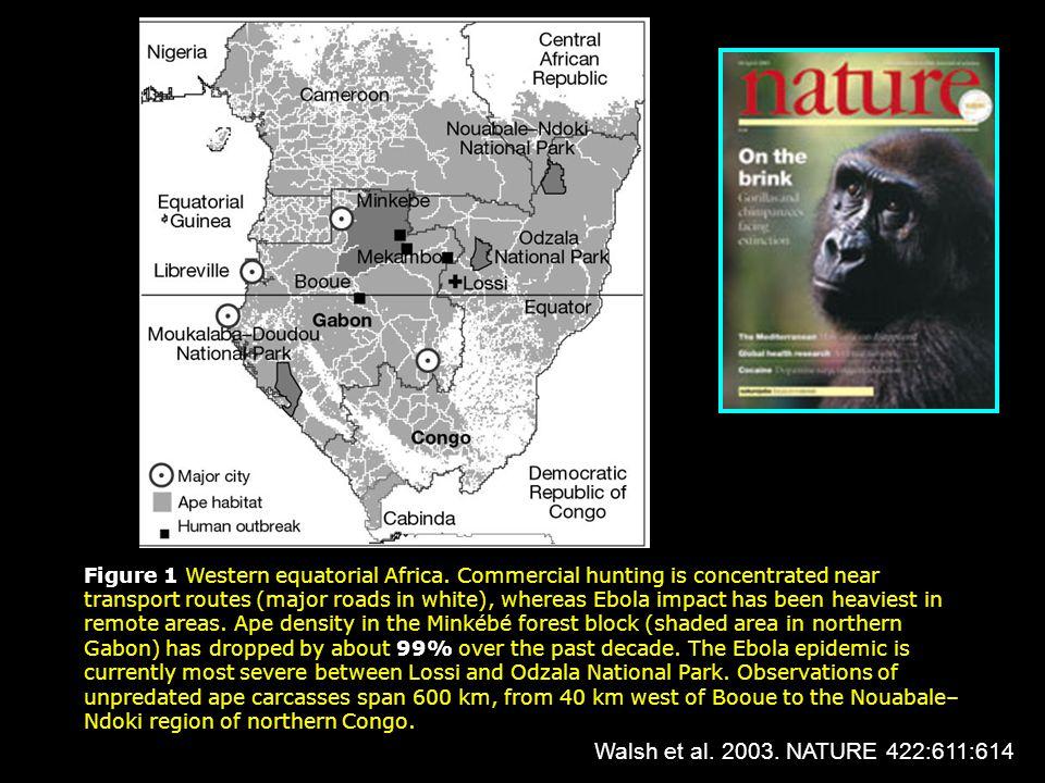 Figure 1 Western equatorial Africa.