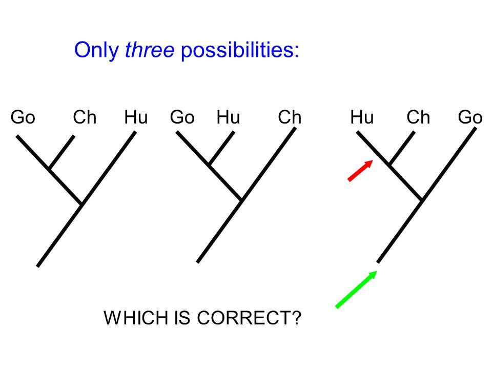 Go Ch Hu Go Hu Ch Hu Ch Go WHICH IS CORRECT Only three possibilities: