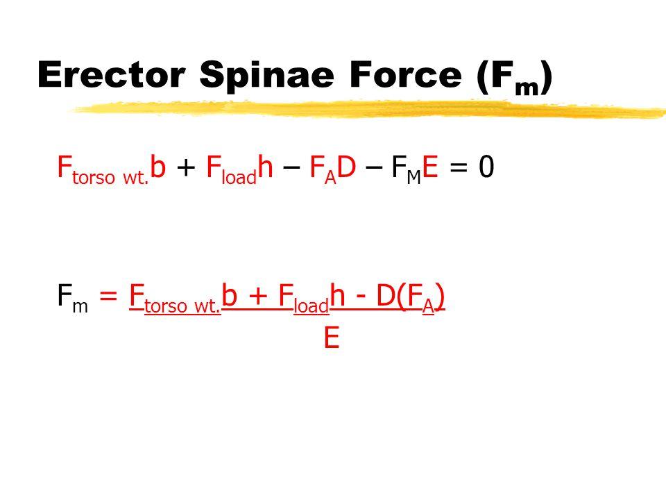 Erector Spinae Force (F m ) F torso wt. b + F load h – F A D – F M E = 0 F m = F torso wt. b + F load h - D(F A ) E