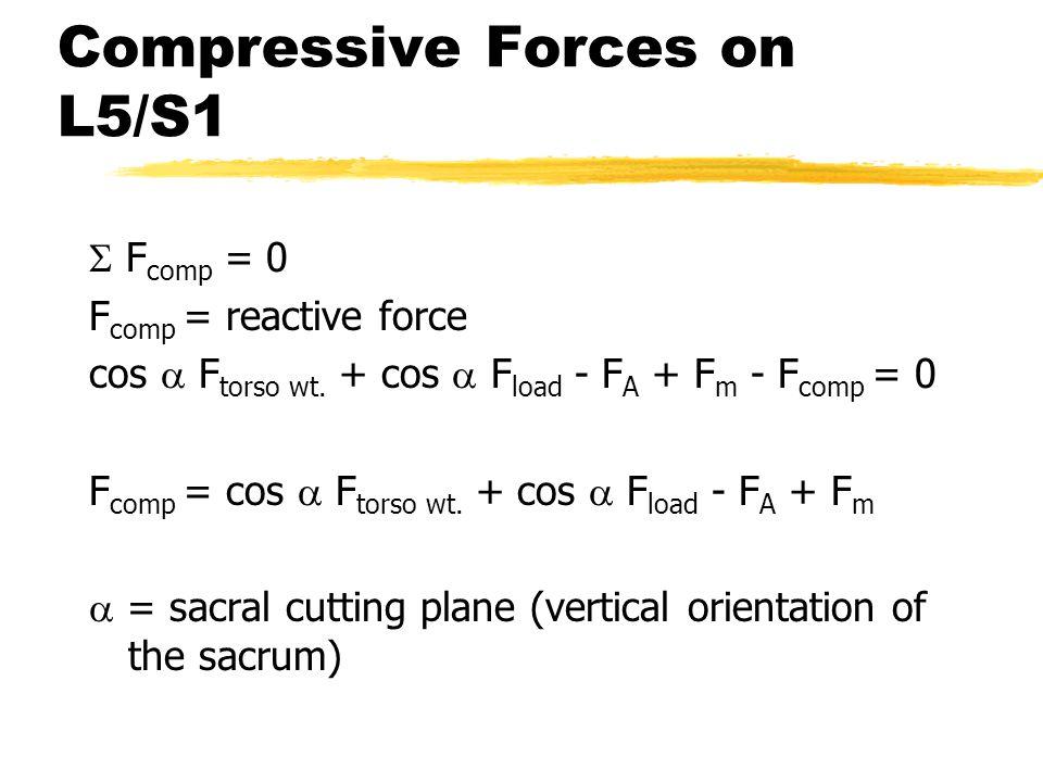 Compressive Forces on L5/S1  F comp = 0 F comp = reactive force cos  F torso wt. + cos  F load - F A + F m - F comp = 0 F comp = cos  F torso wt.