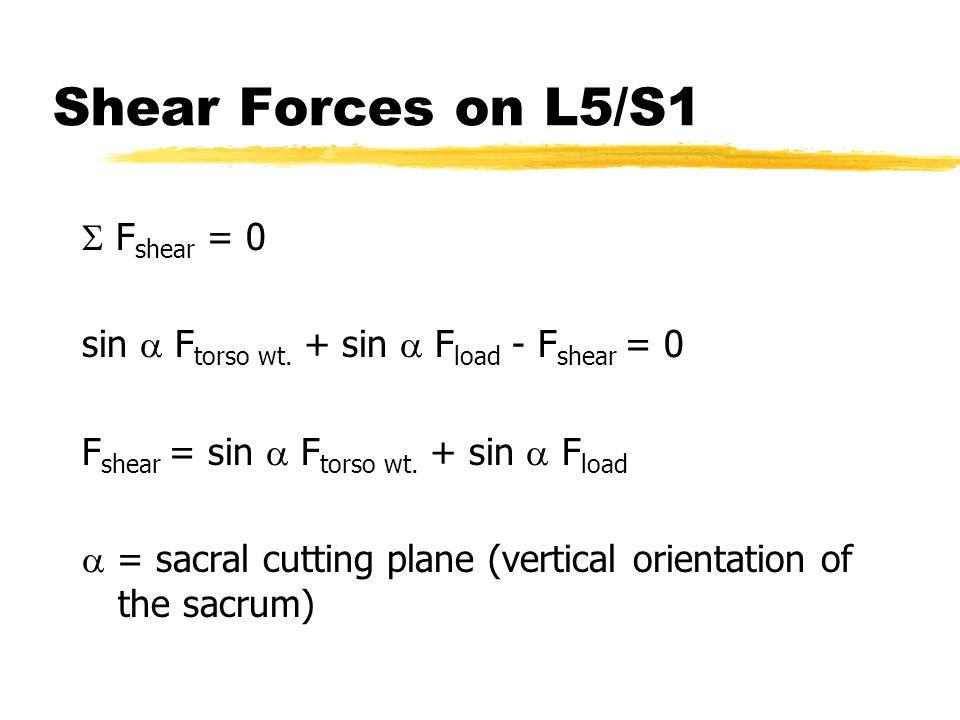 Shear Forces on L5/S1  F shear = 0 sin  F torso wt. + sin  F load - F shear = 0 F shear = sin  F torso wt. + sin  F load  = sacral cutting plane