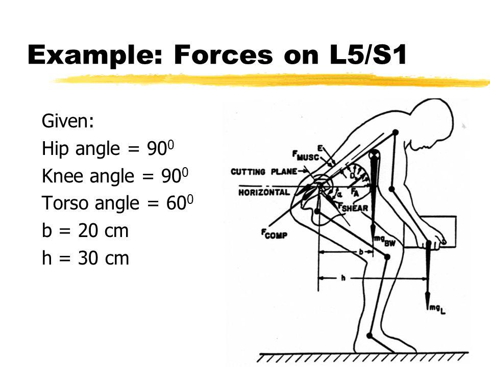 Example: Forces on L5/S1 Given: Hip angle = 90 0 Knee angle = 90 0 Torso angle = 60 0 b = 20 cm h = 30 cm