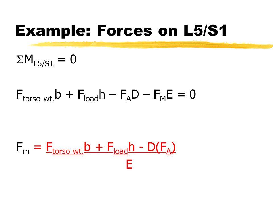 Example: Forces on L5/S1  M L5/S1 = 0 F torso wt. b + F load h – F A D – F M E = 0 F m = F torso wt. b + F load h - D(F A ) E