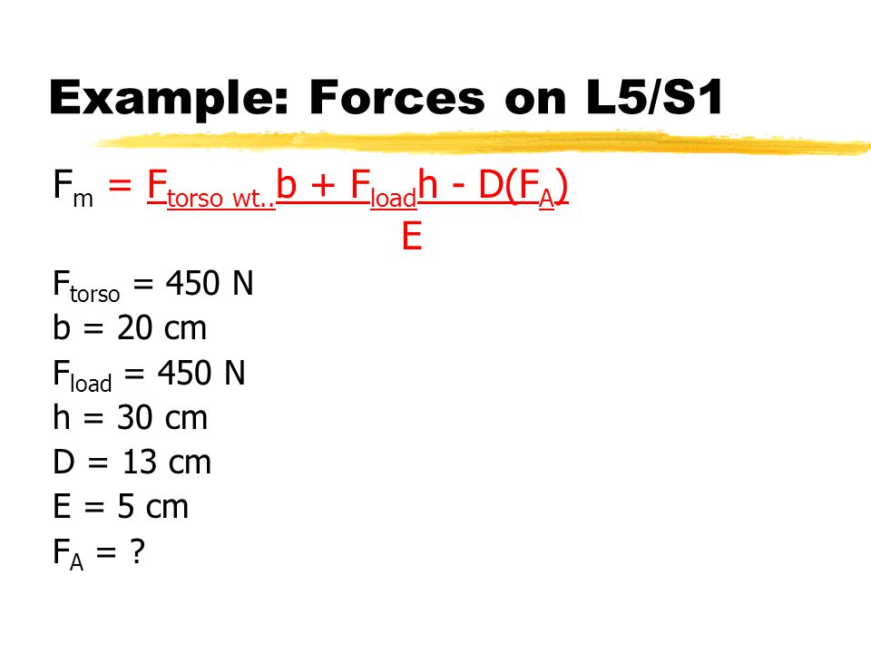 Example: Forces on L5/S1 F m = F torso wt..