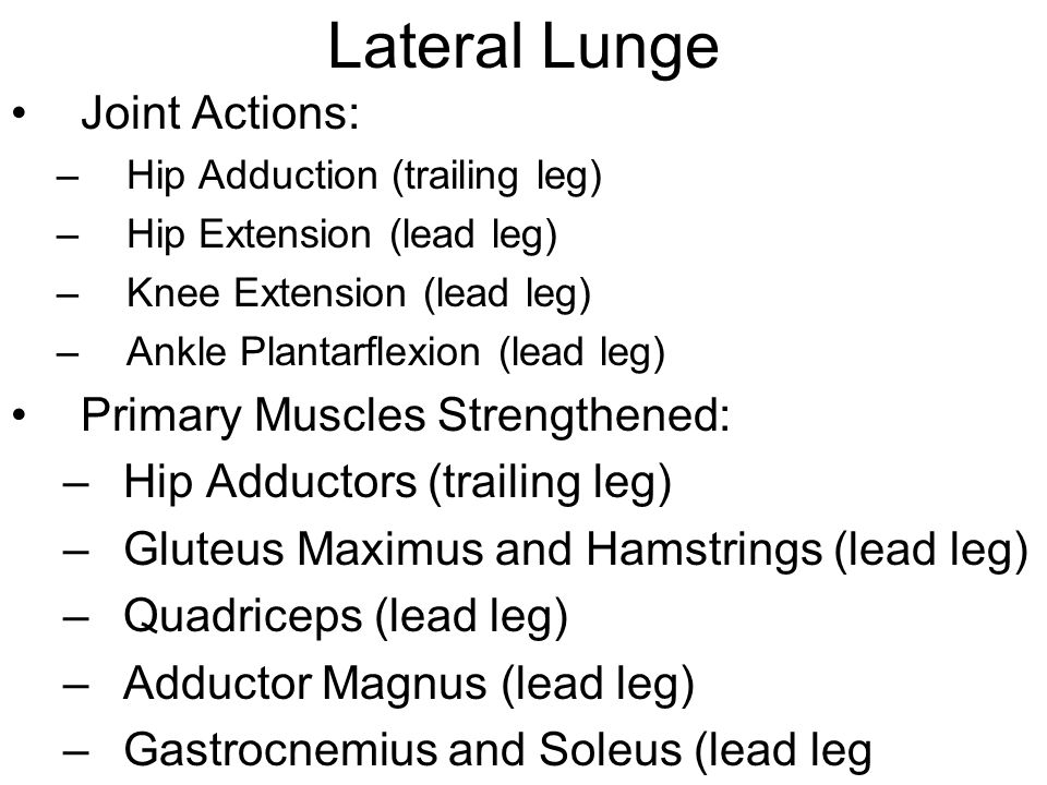 Lateral Lunge Joint Actions: –Hip Adduction (trailing leg) –Hip Extension (lead leg) –Knee Extension (lead leg) –Ankle Plantarflexion (lead leg) Primary Muscles Strengthened: –Hip Adductors (trailing leg) –Gluteus Maximus and Hamstrings (lead leg) –Quadriceps (lead leg) –Adductor Magnus (lead leg) –Gastrocnemius and Soleus (lead leg