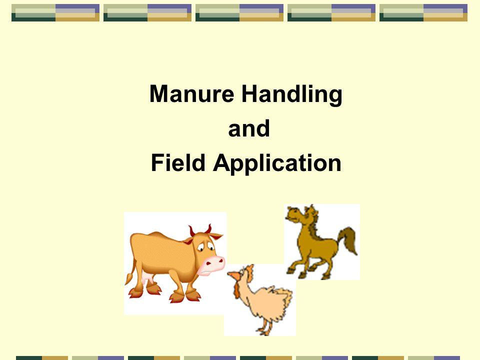 Manure Handling and Field Application