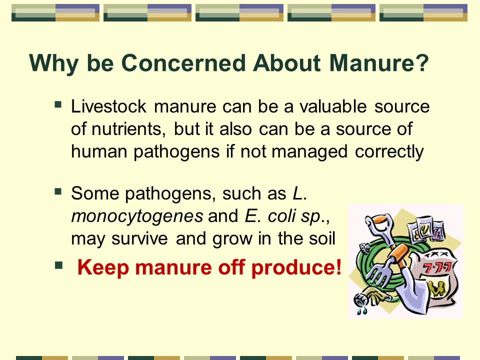 Why be Concerned About Manure.