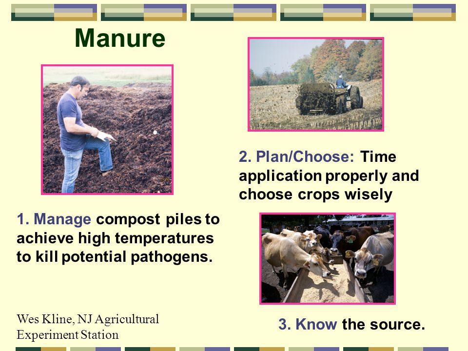 Manure 1. Manage compost piles to achieve high temperatures to kill potential pathogens.