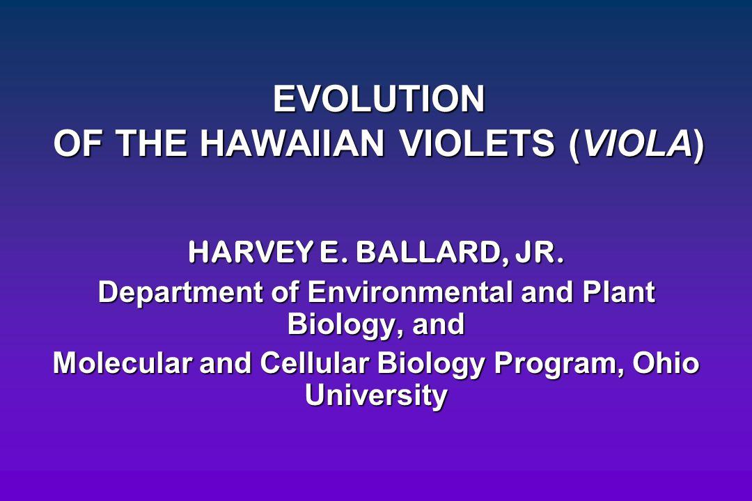 EVOLUTION OF THE HAWAIIAN VIOLETS (VIOLA) HARVEY E. BALLARD, JR. Department of Environmental and Plant Biology, and Molecular and Cellular Biology Pro