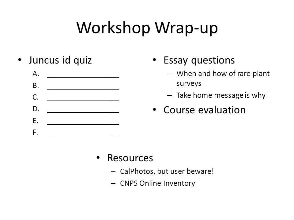 Workshop Wrap-up Juncus id quiz A.__________________ B.__________________ C.__________________ D.__________________ E.__________________ F.__________________ Essay questions – When and how of rare plant surveys – Take home message is why Course evaluation Resources – CalPhotos, but user beware.