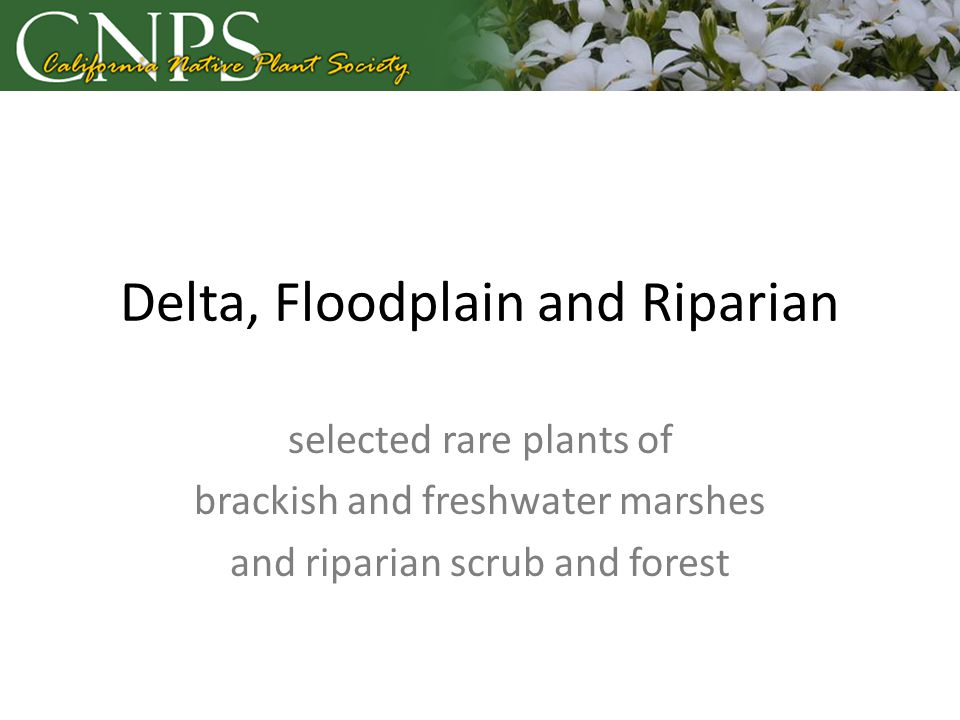 Delta, Floodplain and Riparian selected rare plants of brackish and freshwater marshes and riparian scrub and forest
