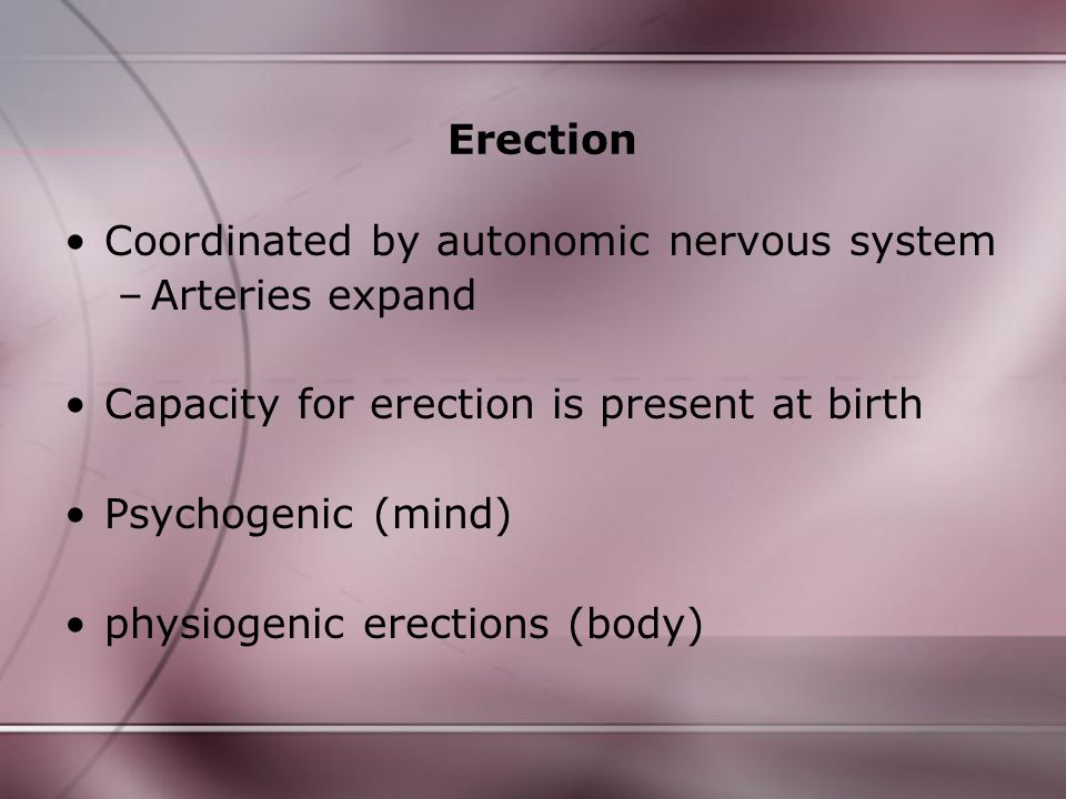 Erection Coordinated by autonomic nervous system –Arteries expand Capacity for erection is present at birth Psychogenic (mind) physiogenic erections (