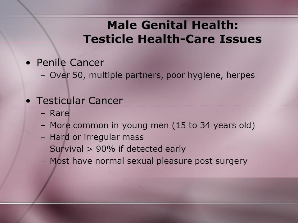 Male Genital Health: Testicle Health-Care Issues Penile Cancer –Over 50, multiple partners, poor hygiene, herpes Testicular Cancer –Rare –More common