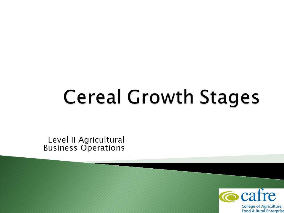 Level II Agricultural Business Operations