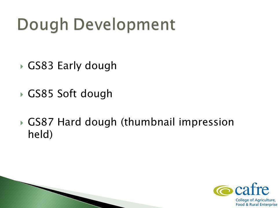  GS83 Early dough  GS85 Soft dough  GS87 Hard dough (thumbnail impression held)