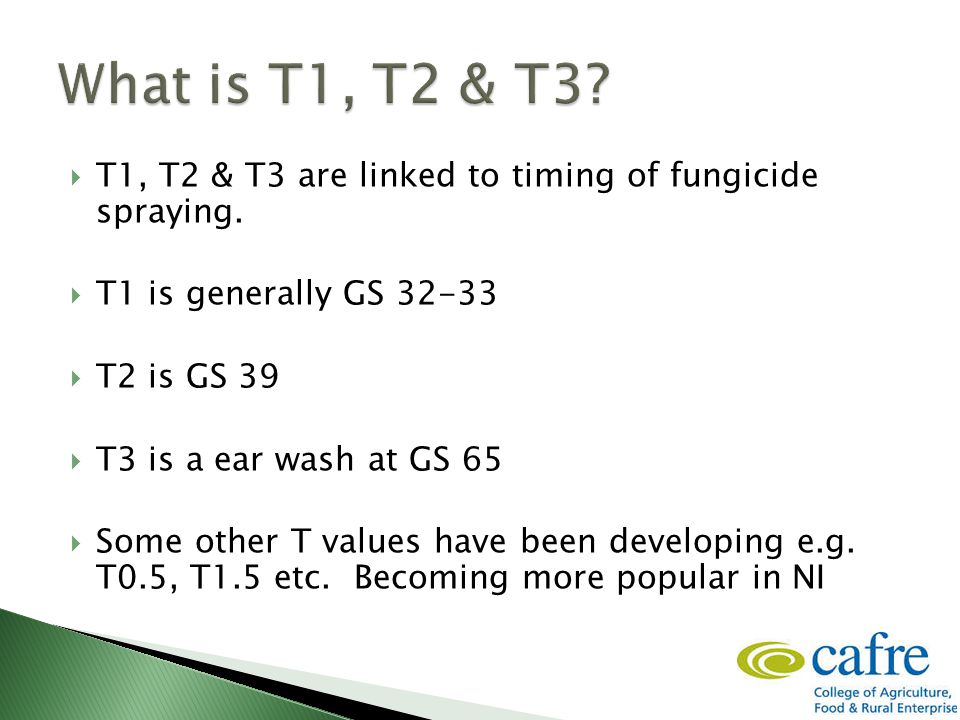 T1, T2 & T3 are linked to timing of fungicide spraying.  T1 is generally GS 32-33  T2 is GS 39  T3 is a ear wash at GS 65  Some other T values h