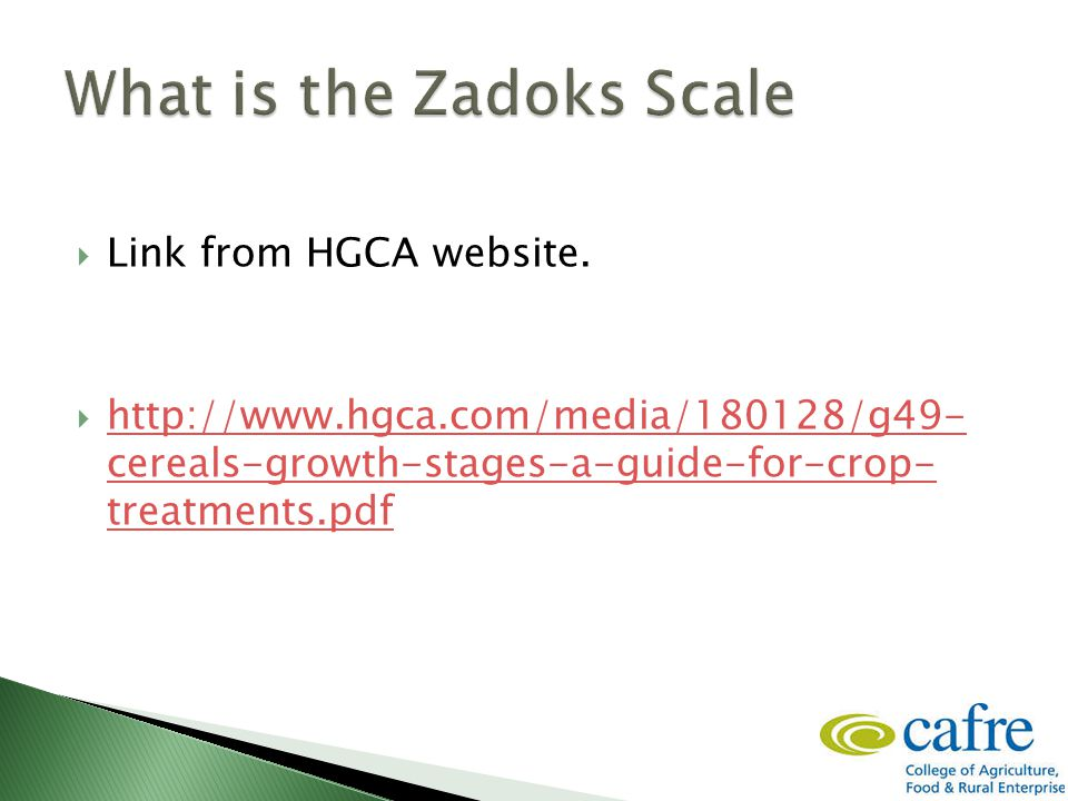  Link from HGCA website.