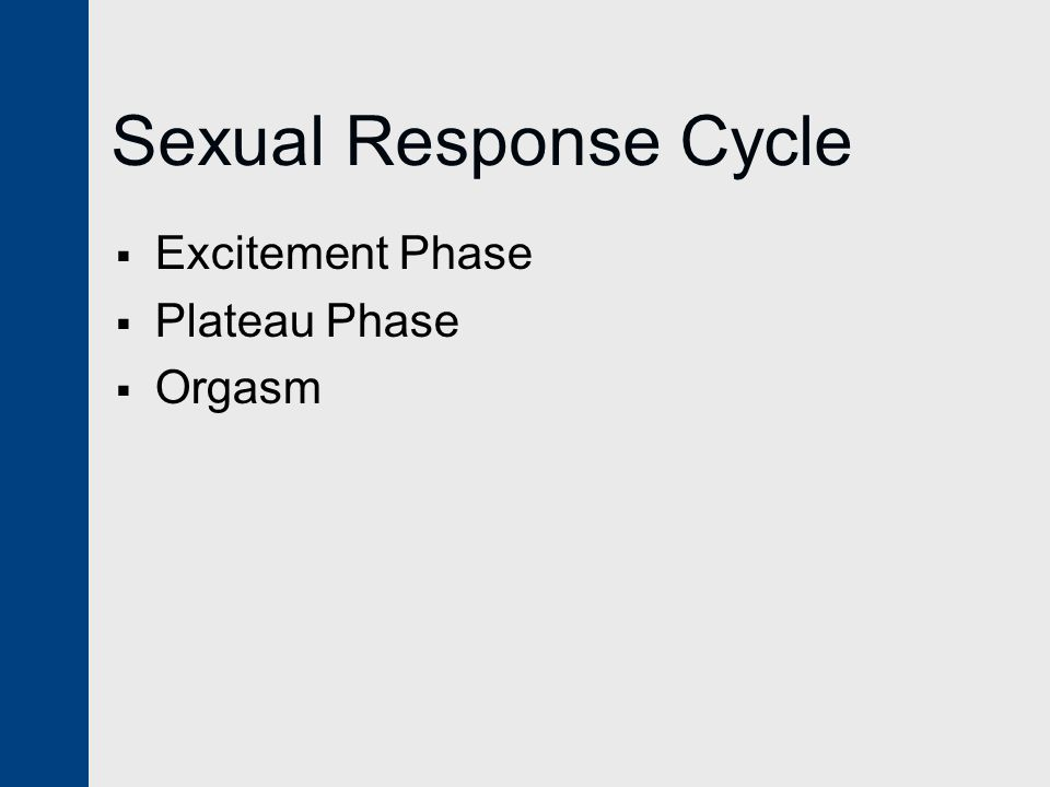 Sexual Response Cycle  Excitement Phase  Plateau Phase  Orgasm