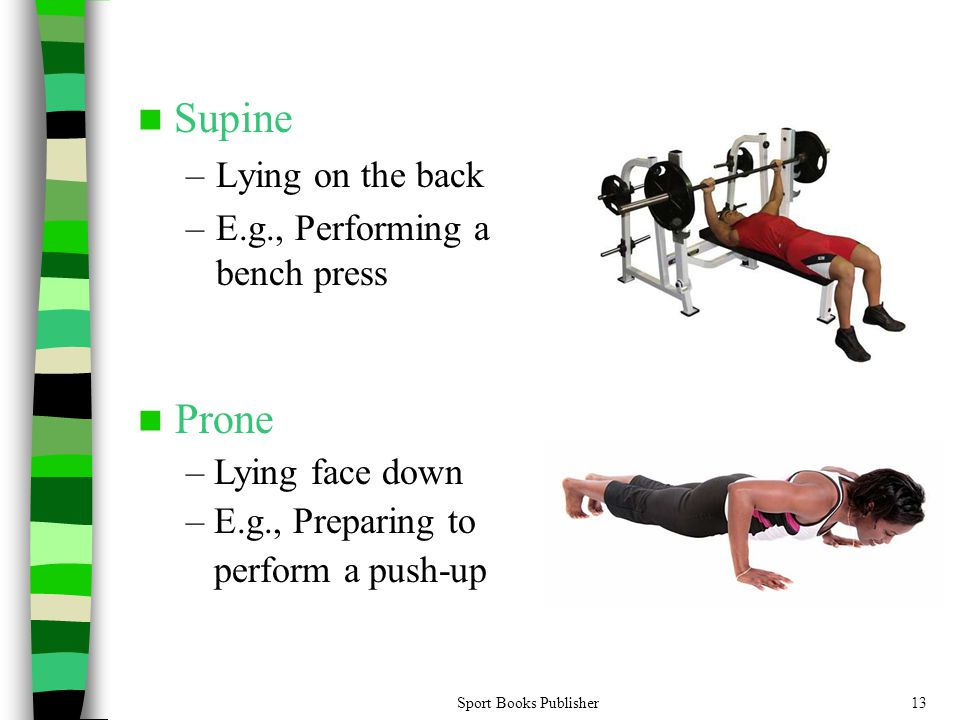Sport Books Publisher13 Supine –Lying on the back –E.g., Performing a bench press Prone – Lying face down – E.g., Preparing to perform a push-up