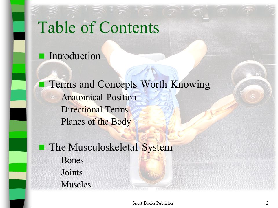 Sport Books Publisher2 Table of Contents Introduction Terms and Concepts Worth Knowing –Anatomical Position –Directional Terms –Planes of the Body The Musculoskeletal System –Bones –Joints –Muscles