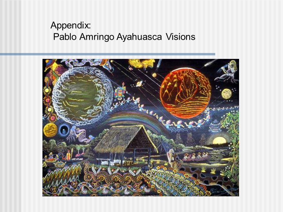 Appendix: Pablo Amringo Ayahuasca Visions