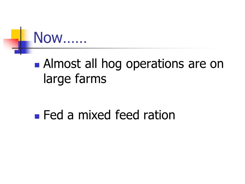 Now…… Almost all hog operations are on large farms Fed a mixed feed ration