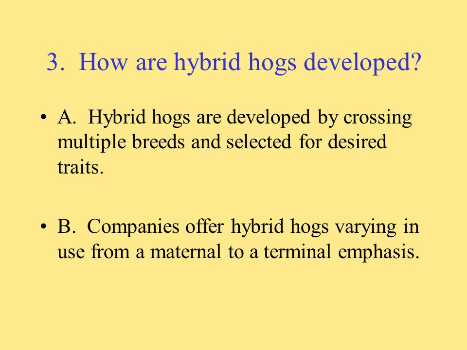 3.How are hybrid hogs developed. A.