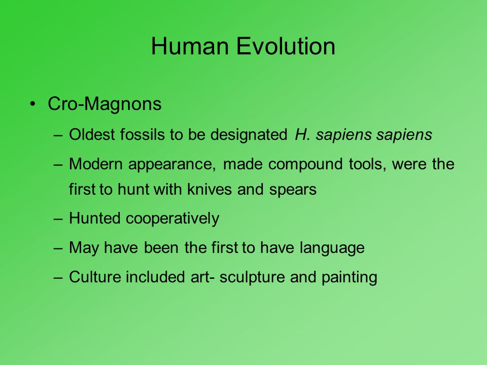 Human Evolution Cro-Magnons –Oldest fossils to be designated H. sapiens sapiens –Modern appearance, made compound tools, were the first to hunt with k