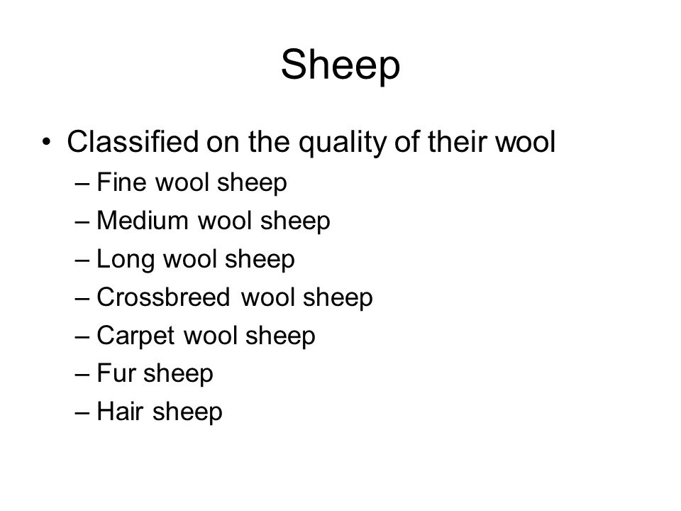 Sheep Classified on the quality of their wool –Fine wool sheep –Medium wool sheep –Long wool sheep –Crossbreed wool sheep –Carpet wool sheep –Fur sheep –Hair sheep