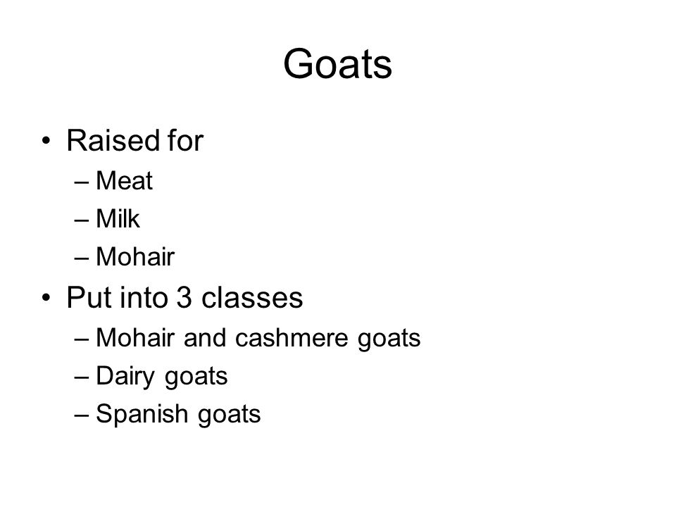 Goats Raised for –Meat –Milk –Mohair Put into 3 classes –Mohair and cashmere goats –Dairy goats –Spanish goats