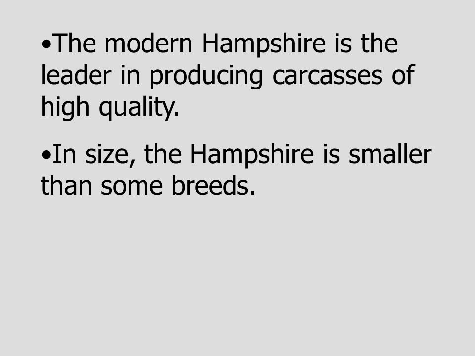 The modern Hampshire is the leader in producing carcasses of high quality. In size, the Hampshire is smaller than some breeds.