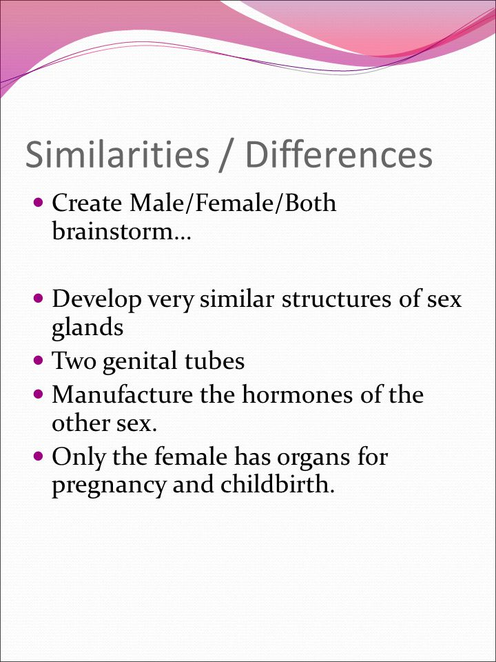 testes (also called testicles) singular = testis produce sperm and sex hormones (androgens, testosterone) each is made of 500-1,200 feet of tightly coiled tubes epididymis (plural = epididymes) allows maturation of sperm spermatazoan (plural = spermatozoa) cell from a man (commonly called sperm ) they carry strings of genes (called chromosomes ) or DNA instructions in case the sperm cell meets with an egg cell and fertilizes it.