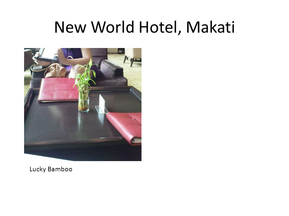 New World Hotel, Makati Lucky Bamboo