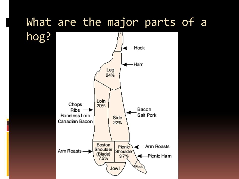 What are the major parts of a hog?