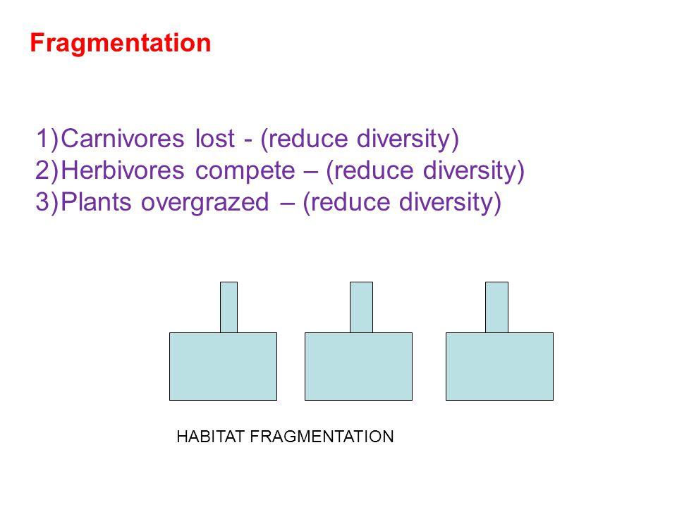 HABITAT FRAGMENTATION Fragmentation 1)Carnivores lost - (reduce diversity) 2)Herbivores compete – (reduce diversity) 3)Plants overgrazed – (reduce diversity)
