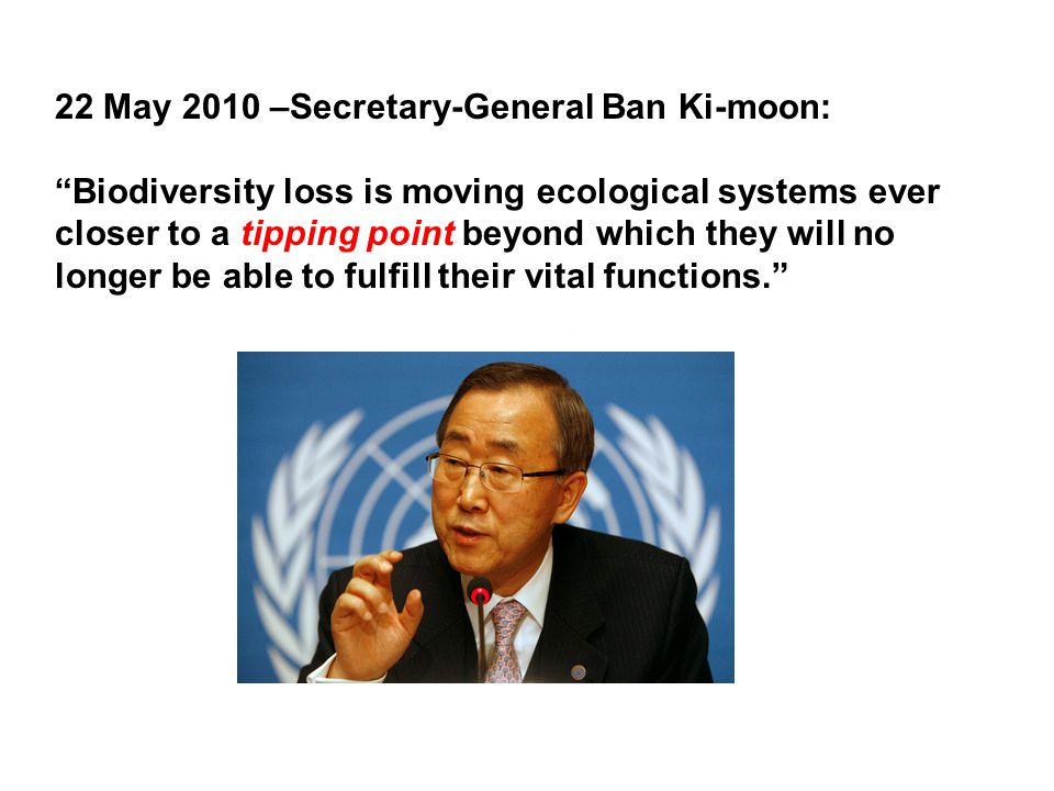 22 May 2010 –Secretary-General Ban Ki-moon: Biodiversity loss is moving ecological systems ever closer to a tipping point beyond which they will no longer be able to fulfill their vital functions.