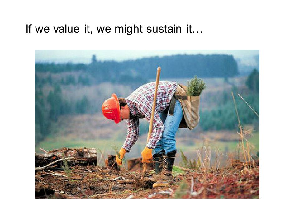If we value it, we might sustain it…